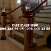 Cầu thang tay vịn nhưa (6)